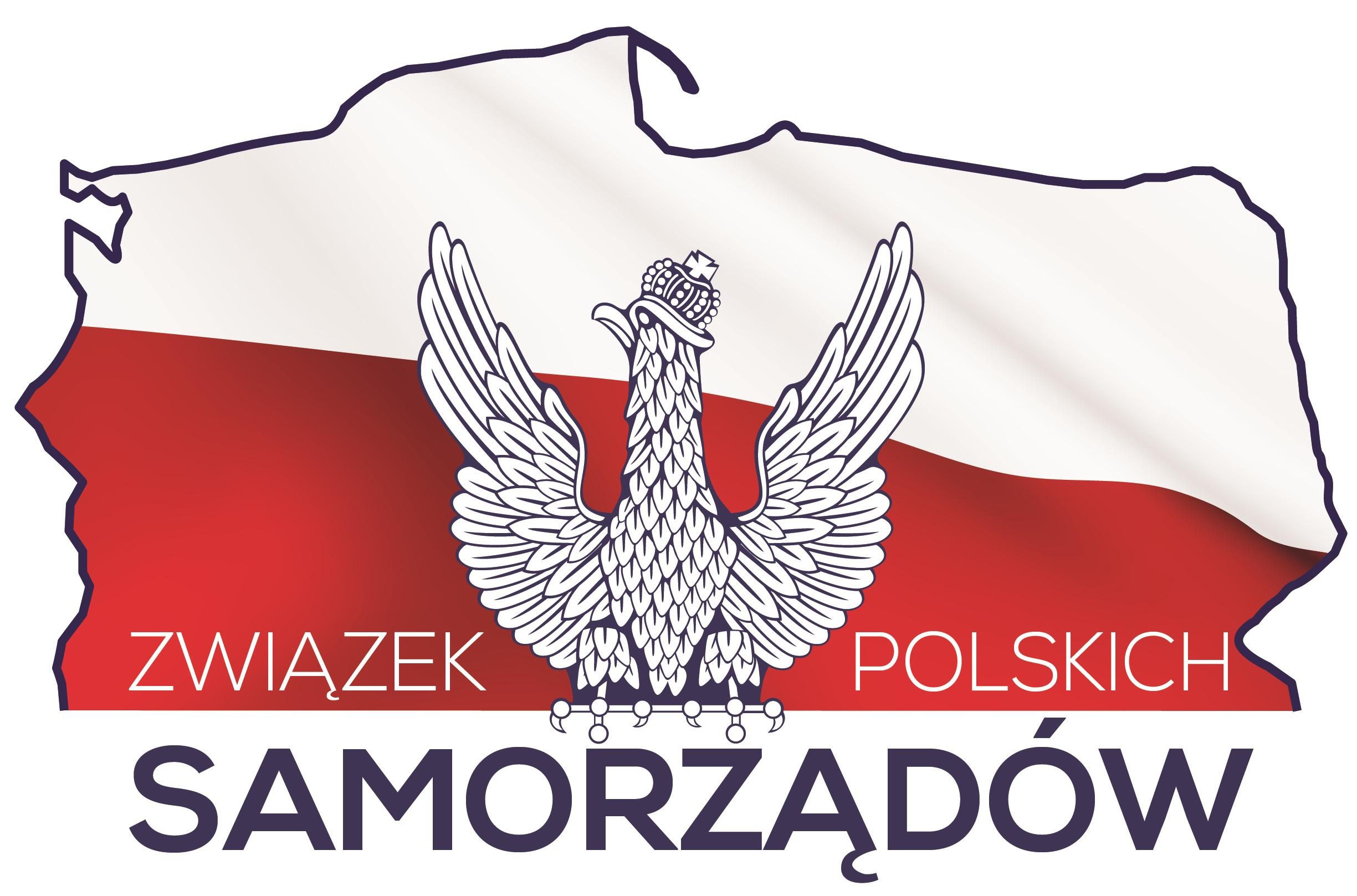 http://www.samorzadypolskie.pl/
