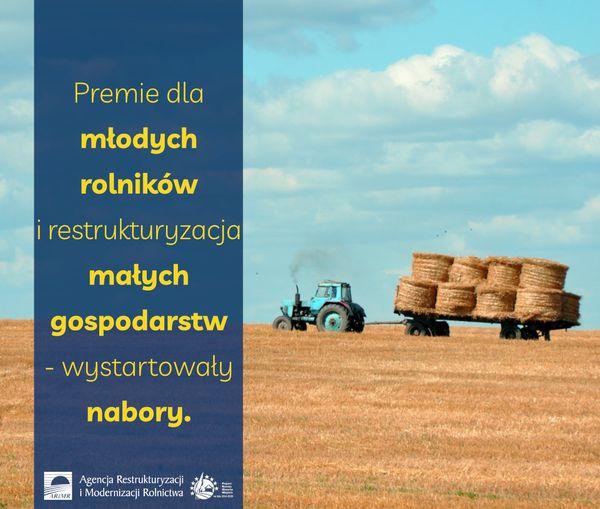 Grafika dotycząca premii dla młodych rolników.